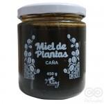 Miel de Plantas Algarrobo y Caña 450grs| Nitay
